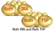 Retirement Benefits Institute | ROTH IRA and ROTH TSP